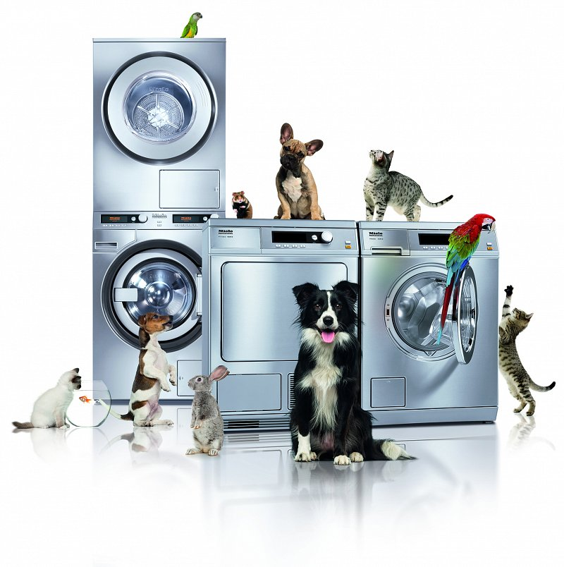 Miele Little Giants with a selection of animals